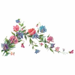 Flower Vines PNG Images