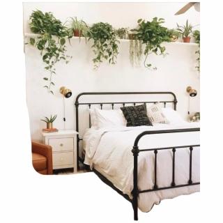 Cute Room Bed Bedroom Plant Plants Tumblr Aesthetic