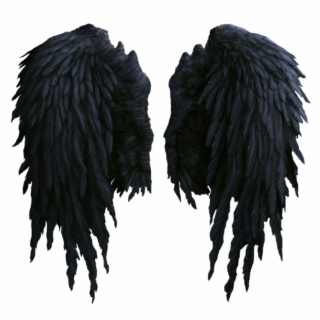Wings Png Images Wings Transparent Png Vippng