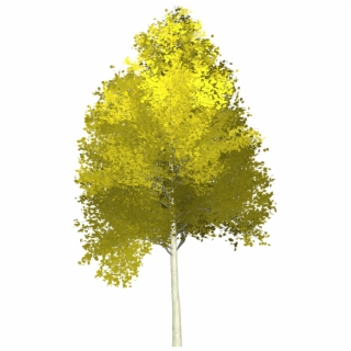 Cartoon Forest Png Forest Tree Painting Cartoon Background Trees Painted 1780247 Vippng Use them in commercial designs under lifetime, perpetual & worldwide rights. cartoon forest png forest tree