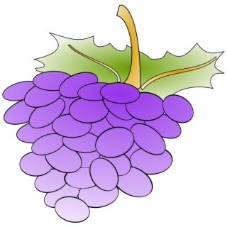 Grapes Png Images Grapes Transparent Png Vippng